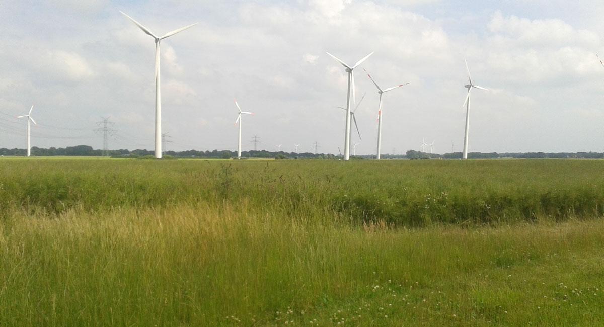 WindPlan GmbH Repowering Süderau - Fläche mit Windkraftanlagen Teaser