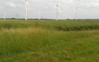 WindPlan GmbH Repowering Süderau - Fläche mit Windkraftanlagen Windpark Süderau